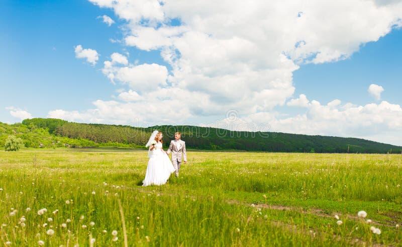 Um par novo em noivos do amor, dia do casamento no verão Aprecie um momento da felicidade e do amor em um campo Noiva imagens de stock