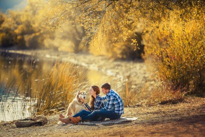 Um par novo est? sentando-se pelo lago no por do sol com um c?o ronco da ra?a foto de stock royalty free