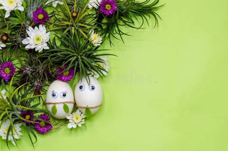 Um par ovo da páscoa que esconde no cacho verde de Airplant do Tillandsia fotos de stock royalty free