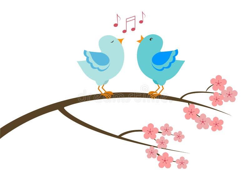 Um par pássaros do canto ilustração do vetor