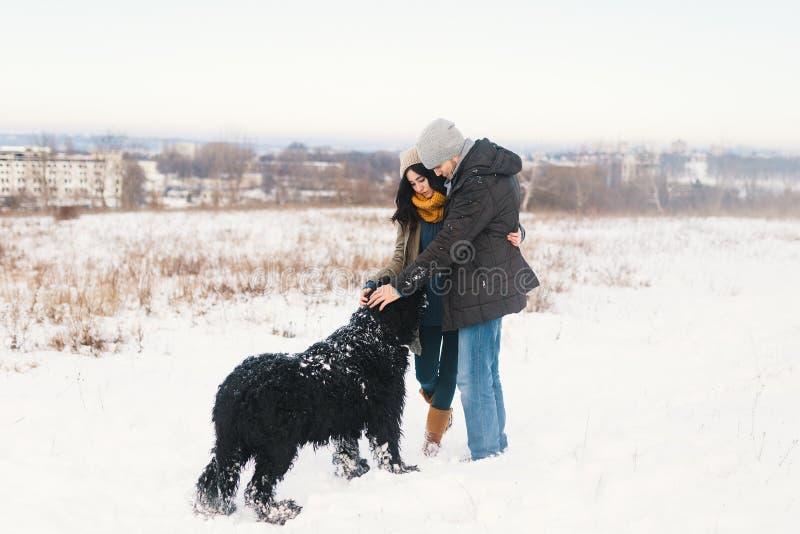 Um par que aprecia o inverno ao andar seu havin grande do cão preto fotografia de stock royalty free