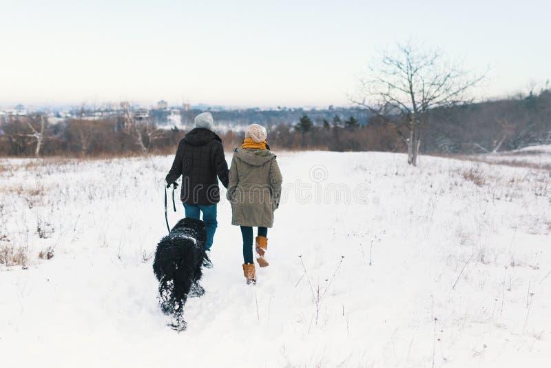 Um par que aprecia o inverno ao andar seu havin grande do cão preto imagem de stock