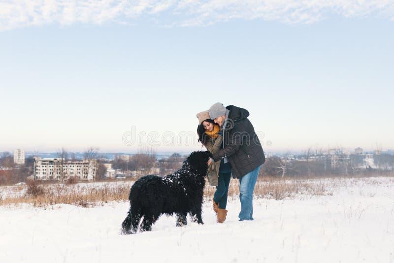 Um par que aprecia o inverno ao andar seu havin grande do cão preto foto de stock