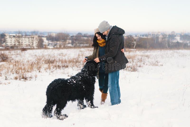 Um par que aprecia o inverno ao andar seu havin grande do cão preto imagem de stock royalty free