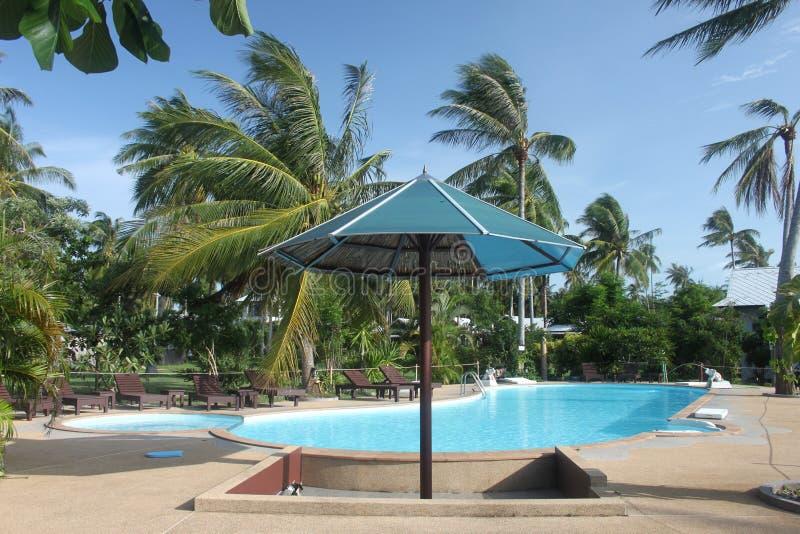 Um para-sol com piscina com pamls claros da água azul e da selva perto de um hotel na ilha de Koh Samui em Tailândia foto de stock