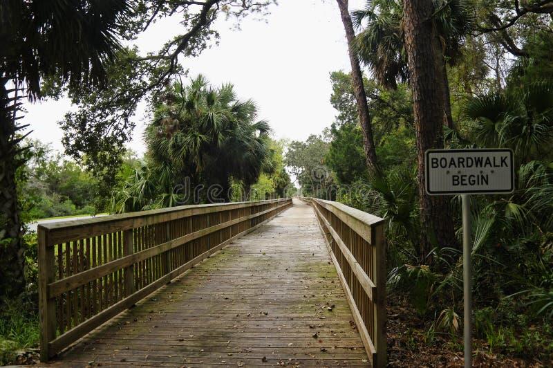 Um passeio à beira mar através da região pantanosa e das madeiras tropicais luxúrias, Talbot Island State Park grande, Florida, E fotos de stock royalty free