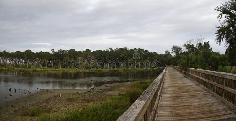 Um passeio à beira mar através da região pantanosa e das madeiras tropicais luxúrias, Talbot Island State Park grande, Florida, E imagens de stock royalty free
