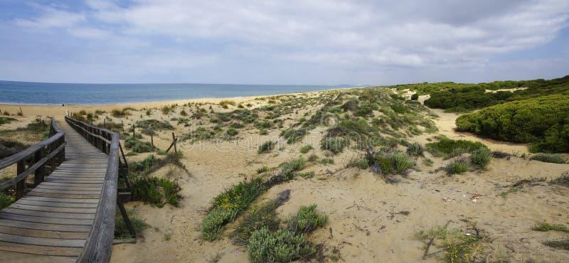 Um passeio ? beira mar de madeira atrav?s das dunas que conduzem ? praia do EL Portil, Huelva, a Andaluzia, Espanha foto de stock