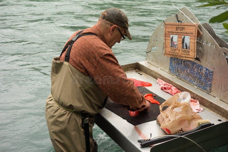 Um peixe da limpeza do homem em uma estação situada ao longo do rio do russo em Alaska fotos de stock royalty free