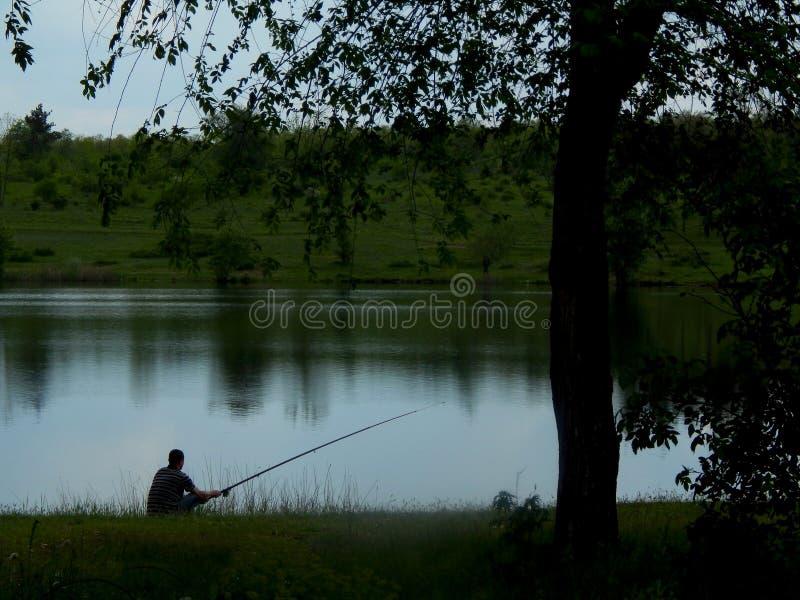 Um pescador em um banco verde com uma vara de pesca sob uma grande árvore senta e trava peixes fotografia de stock