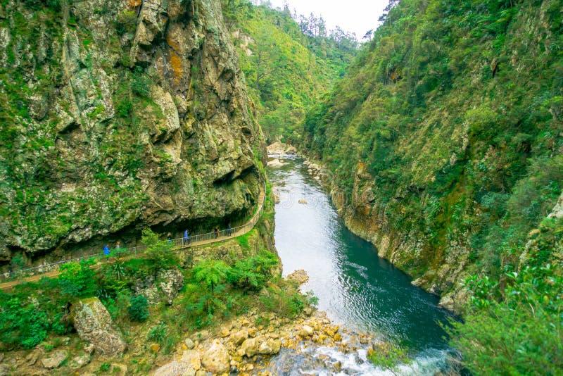 Um pessoa não identificado que anda na passagem natural Karangahake Gorge, rio que corre através do desfiladeiro de Karangahake c imagem de stock