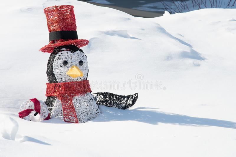 Um pinguim perdido na neve imagens de stock