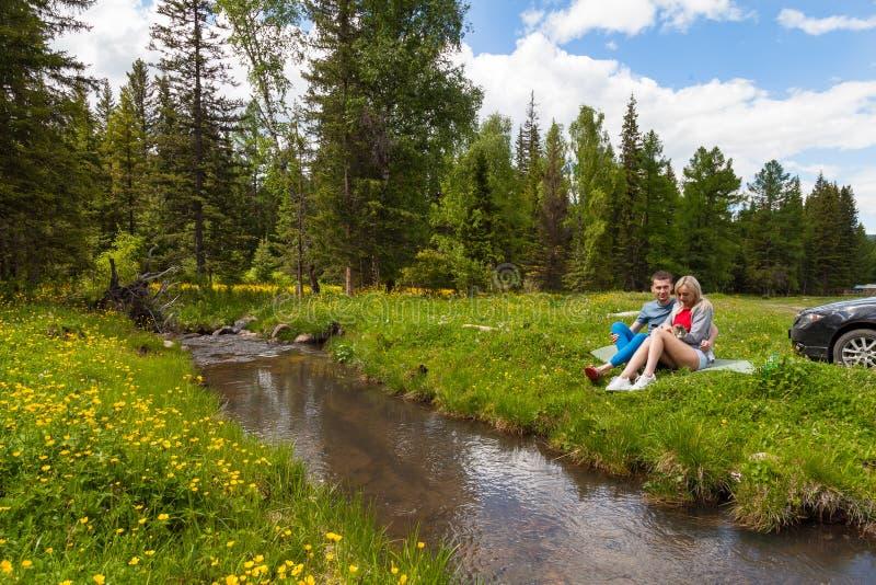 Um piquenique no banco de um rio da montanha com grama verde e as flores amarelas na perspectiva das árvores coníferas e de um az foto de stock royalty free