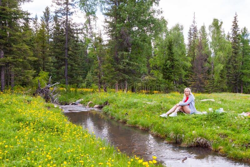 Um piquenique no banco de um rio da montanha com grama verde e as flores amarelas na perspectiva das árvores coníferas e de um az fotos de stock royalty free