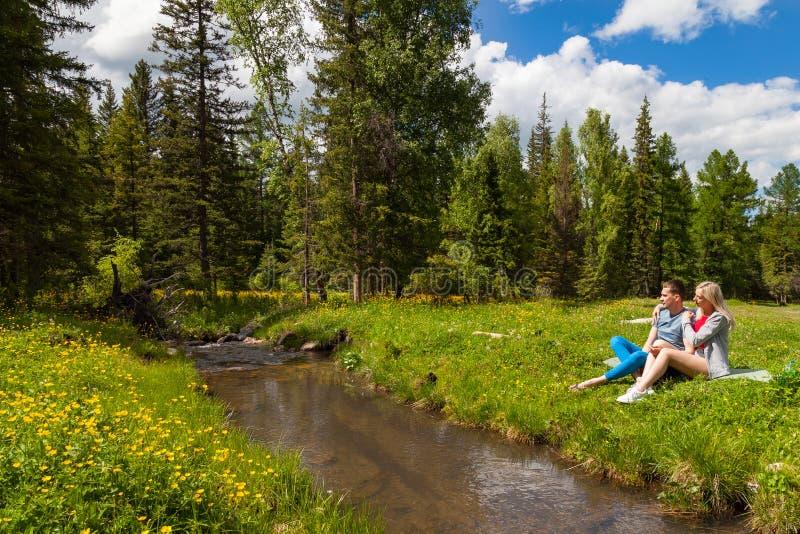Um piquenique no banco de um rio da montanha com grama verde e as flores amarelas na perspectiva das árvores coníferas e de um az foto de stock