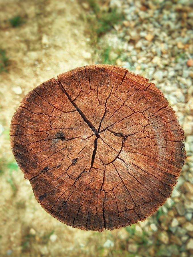 Um polo de madeira imagens de stock