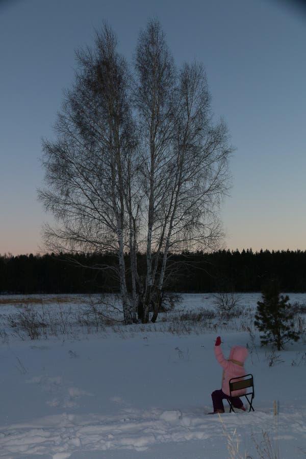 Um por do sol do inverno sobre um campo nevado O sol ajustou-se e a noite está vindo fotografia de stock