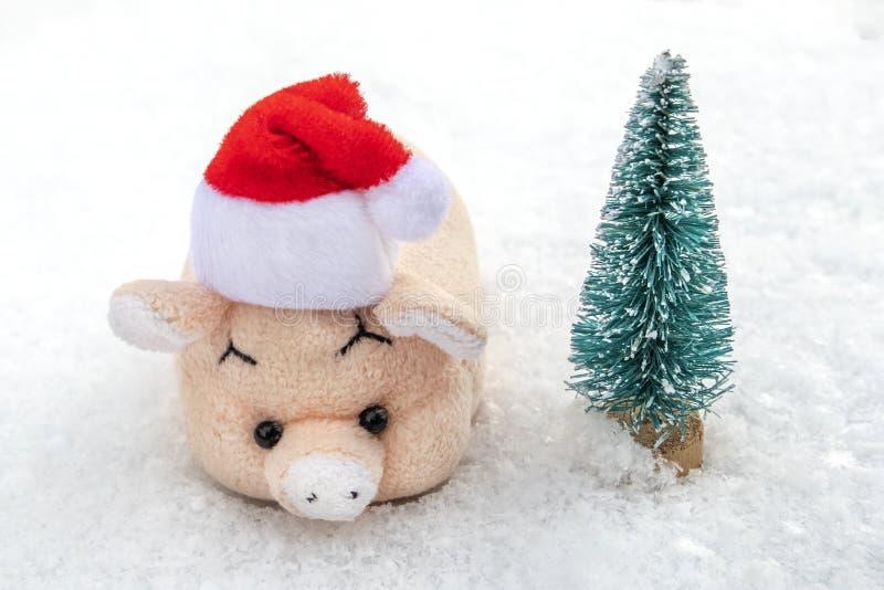 Um porco do rosa do brinquedo em um chapéu vermelho de Santa Claus está estando na neve branca ao lado de uma árvore de Natal O c fotos de stock royalty free