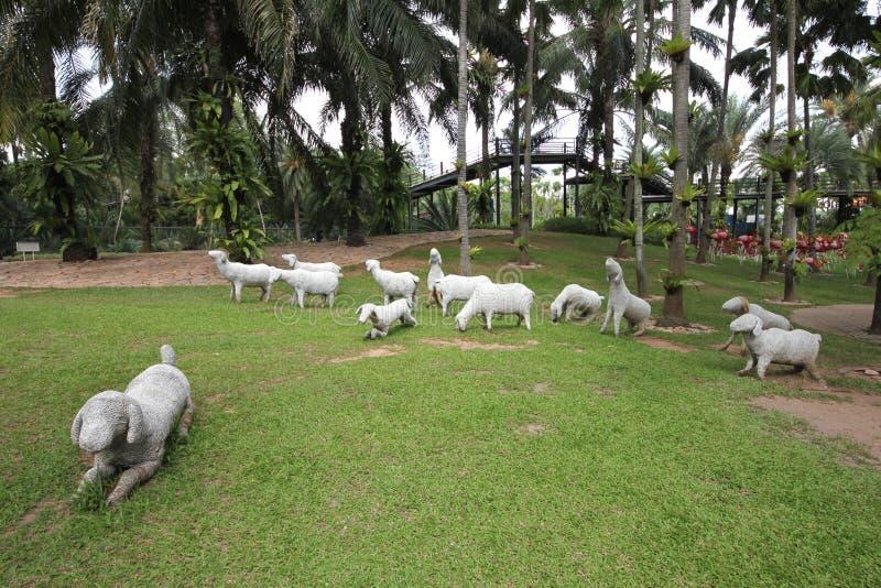 Um prado com carneiros brancos e grama e árvores e pedras no jardim botânico tropical de Nong Nooch perto da cidade de Pattaya em imagem de stock royalty free