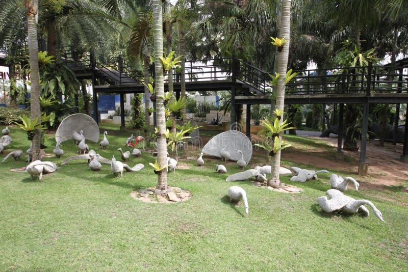 Um prado com cisnes e grama e árvores e pedras brancas no jardim botânico tropical de Nong Nooch perto da cidade de Pattaya em Ta foto de stock royalty free