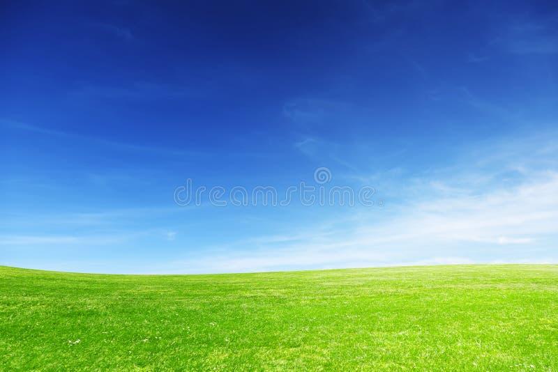 Um prado ideal iluminado com luz do sol em um dia de mola Fundo e bandeira perfeitos foto de stock