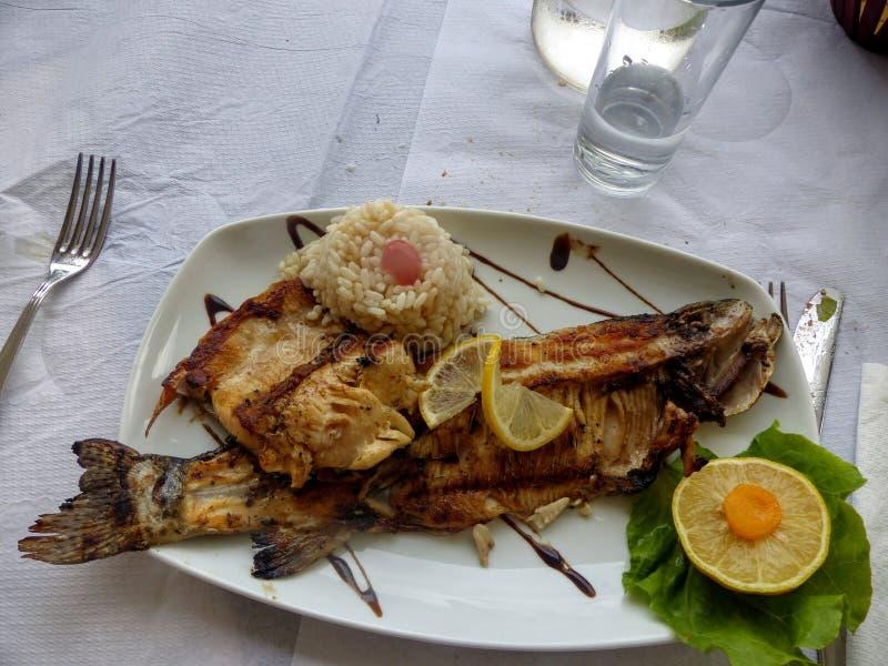 Um prato de um peixe grelhado com em torno do arroz, o limão e a salada verde para a decoração, prontos para ter comido imagem de stock