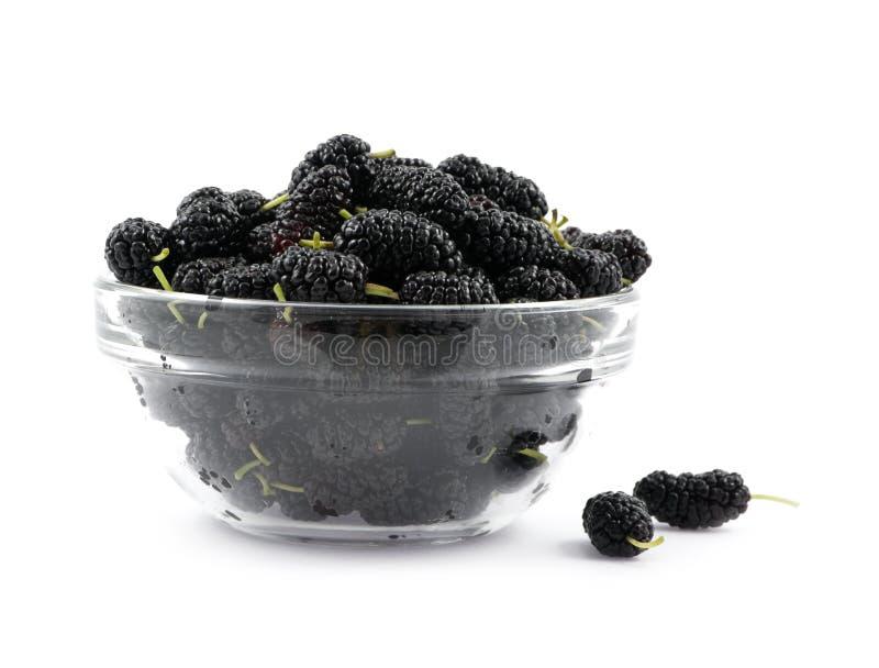 Um preto do mulberry está em um prato foto de stock