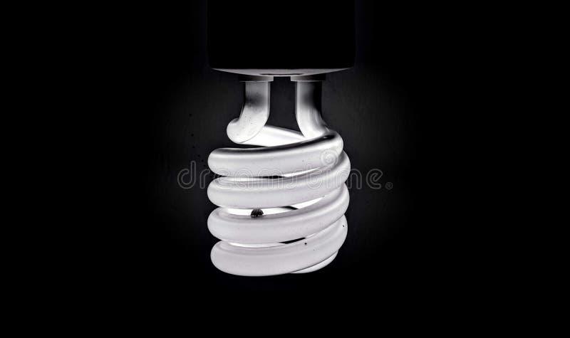 Um preto e branco da lâmpada espiral imagens de stock