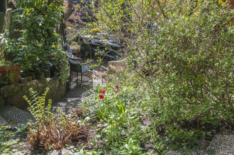 Um quintal cercado por arbustos bonitos imagem de stock royalty free