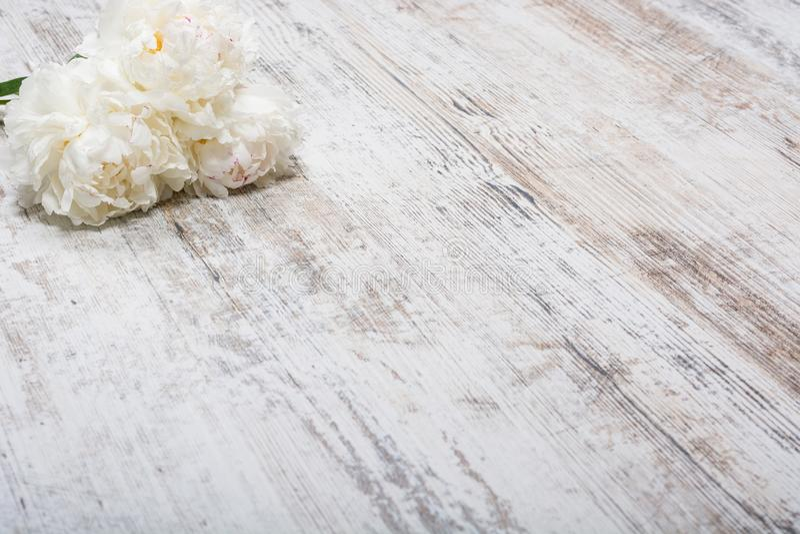 Um ramalhete das peônias brancas encontra-se em uma placa de madeira leve velha, flatlay, copyspace imagem de stock royalty free