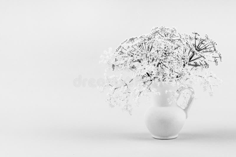 Um ramalhete de flores brancas delicadas pequenas da baga de sabugueiro em um jarro branco, uma foto preto e branco imagem de stock