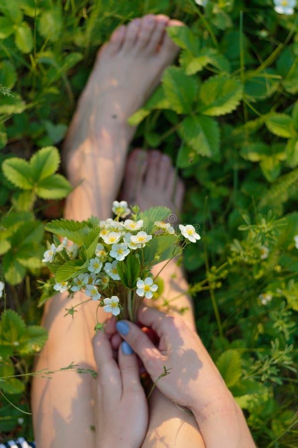 Um ramalhete de flores selvagens nas mãos de uma menina na grama em um dia de verão calmo ensolarado Pés desencapados e apreciaçã fotografia de stock