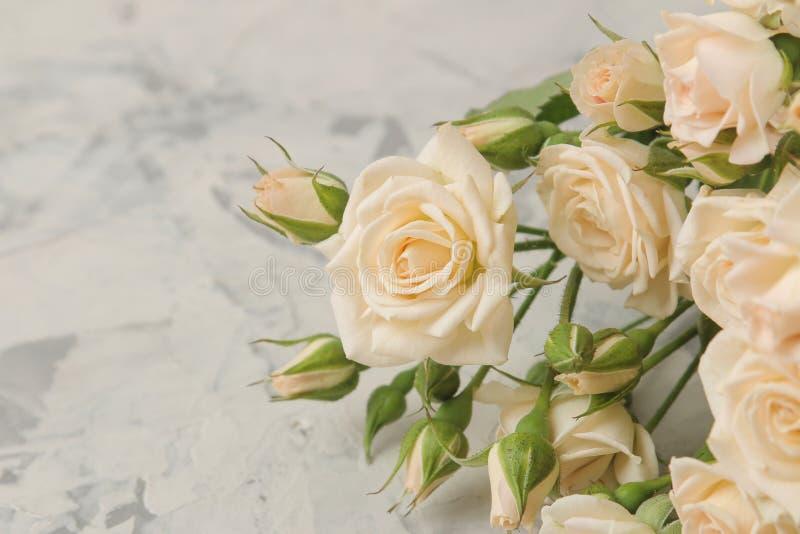 Um ramalhete de mini rosas macias bonitas em um fundo do betão leve Espaço para o texto fotografia de stock