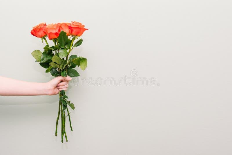 Um ramalhete de rosas coloridas A mão de uma moça guarda rosas bonitas Uma mulher guarda para fora uma mão com um ramalhete das f imagem de stock royalty free