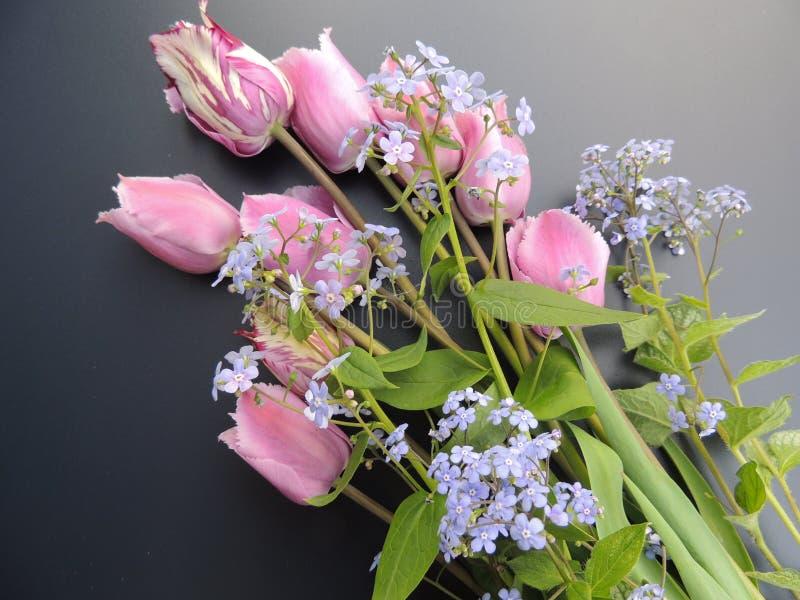 Um ramalhete de tulipas da mola em um fundo preto foto de stock royalty free