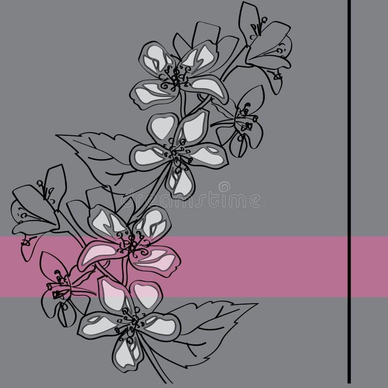 Um ramo do jasmim de florescência fotografia de stock
