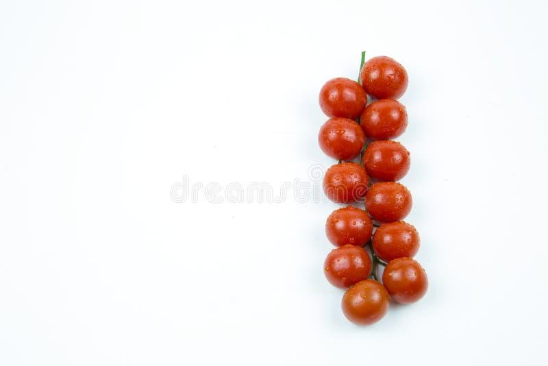 Um ramo dos tomates vermelhos frescos com gotas da água isolados no fundo branco fotografia de stock