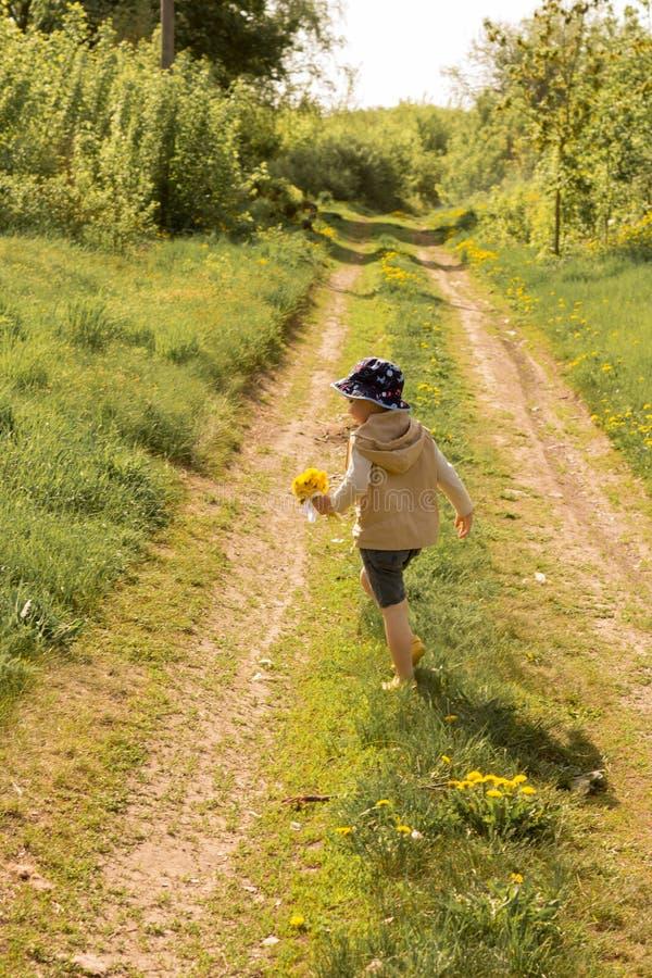Um rapaz pequeno está guardando um grande ramalhete dos dentes-de-leão amarelos, tímido, fazendo caretas, um presente a sua mãe fotografia de stock royalty free
