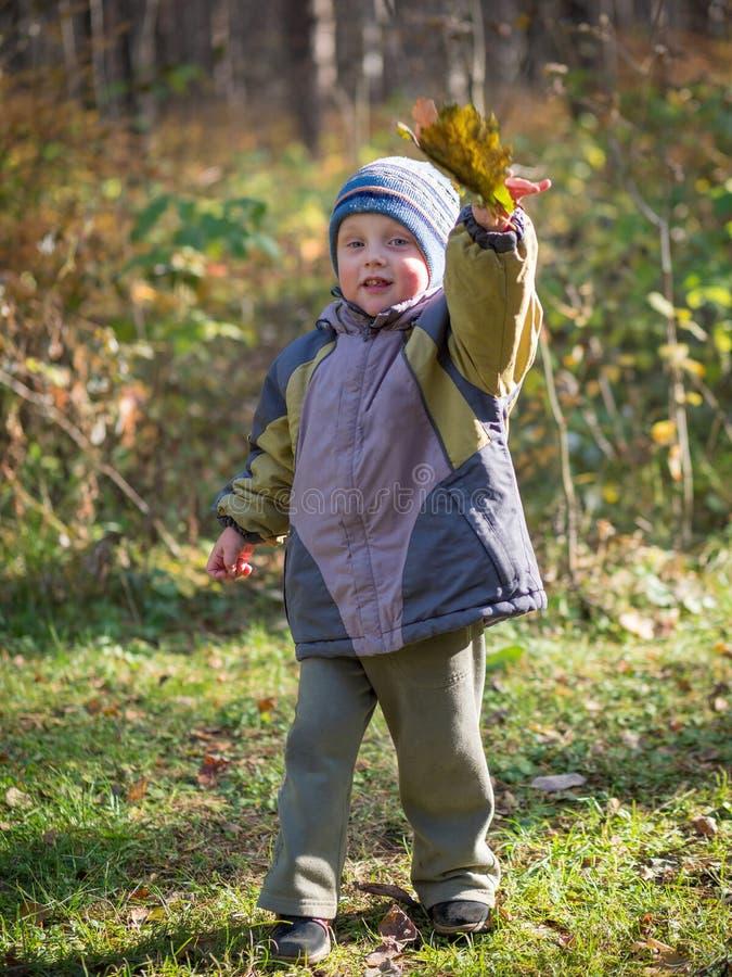 Um rapaz pequeno joga as folhas no parque do outono foto de stock royalty free