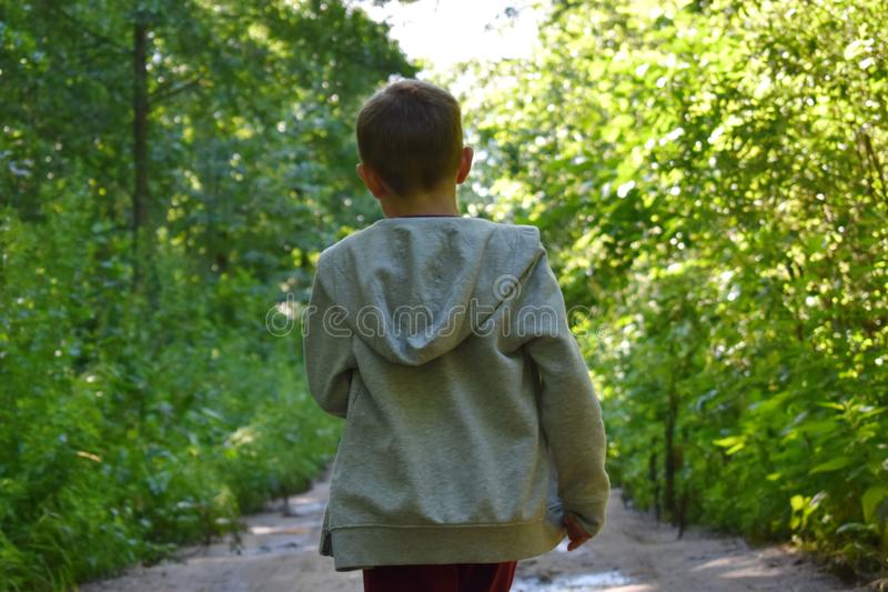 Um rapaz pequeno na floresta no verão foto de stock