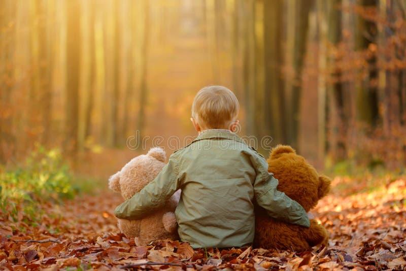 Um rapaz pequeno que joga no parque do outono fotografia de stock royalty free