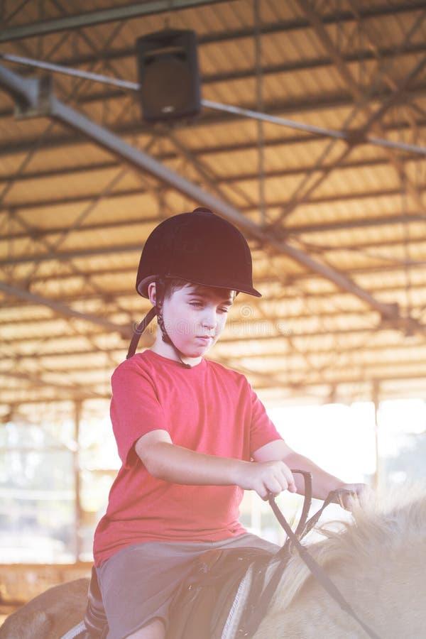 Um rapaz pequeno que monta um cavalo Primeiras lições da equitação foto de stock royalty free