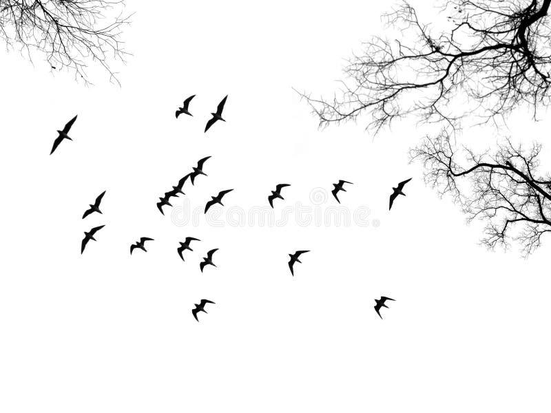 Um rebanho do pássaro entre ramos fotografia de stock