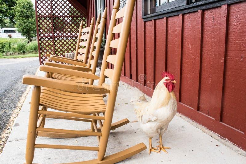 Um relance do estilo de vida tradicional na vila de Amish, Pensilvânia fotografia de stock royalty free