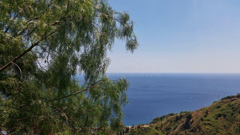Um relance do mar atrás dos ramos foto de stock royalty free