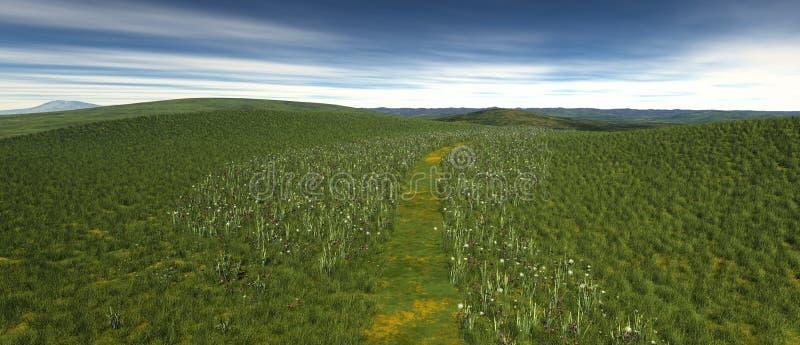 Um remendo pequeno da grama com papoila e flores ilustração royalty free