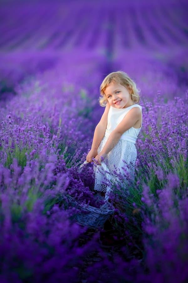 Um retrato bonito do ar livre da moça criança no chapéu com as flores de cesta que colhem no campo Provence da alfazema, em foto de stock royalty free