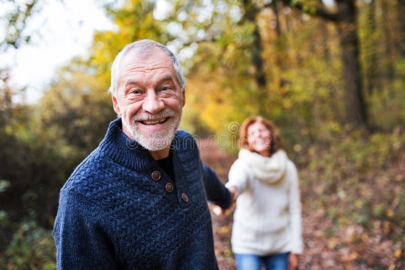 Um retrato de um par superior que anda em uma natureza do outono fotografia de stock