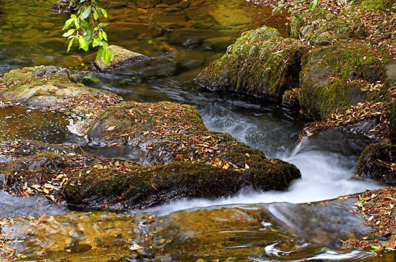 Um rio calmo imagens de stock royalty free