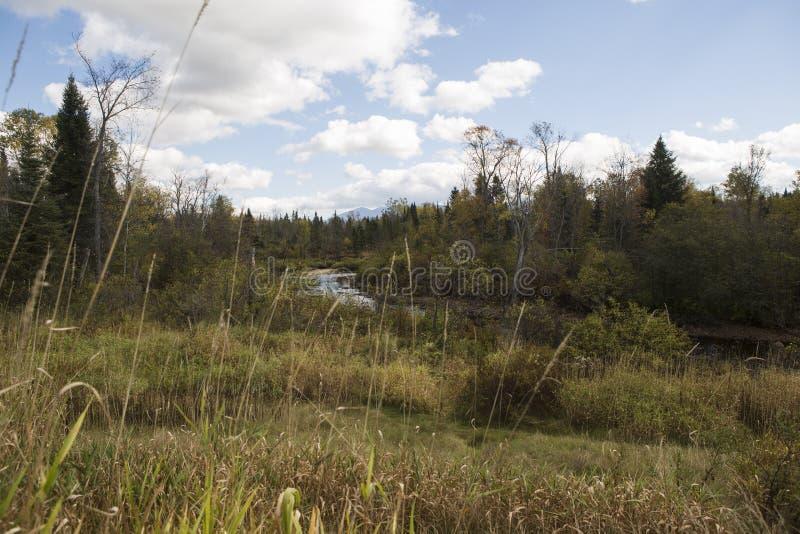 Um rio corre completamente foto de stock royalty free
